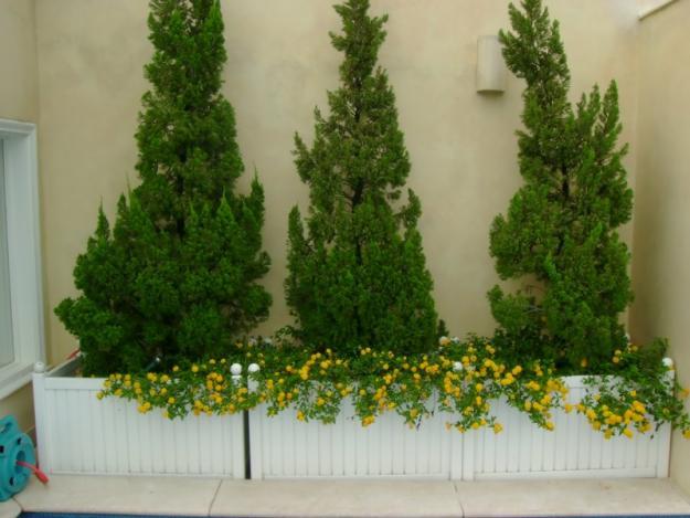 Paisagismo e jardinagem picture to pin on pinterest for Paisagismo e jardinagem